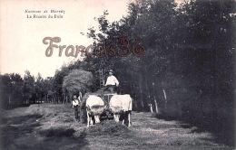 (64) Environs De Biarritz - La Récolte Du Foin - Excellent état - 2 SCANS - Biarritz