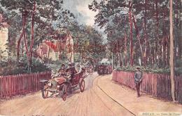 17 - ROYAN -  Lvers Le Parc- Illustration     -  2 Scans - Royan