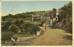 CLWYD - PRESTATYN - HILLSIDE GARDENS Clw139 - Flintshire