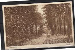 Breda Bosgezicht 1931 (b2) - Breda