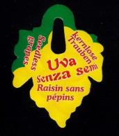 # UVA SENZA SEMI - SEEDLESS TABLE GRAPE Italy Fruit Tag Balise Etiqueta Anhänger Cartellino Uva Raisin Uvas Traube - Fruits & Vegetables