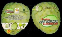 # CHIRIMOYA LOS CURSOS Almunecar Granada  Tag Balise Etiqueta Anhänger Cartellino Fruits Frutas Frutta Früchte - Fruits & Vegetables