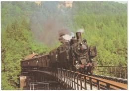 TRAIN Allemagne - EISENBAHN Deutschland - WUTACH ZOLLHAUS-BLUMBERG WEIZEN STÜHLINGEN - Lokomotiven 93 1394 Und 93 1360 - Trains