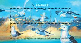 Palau-2014-Birds-Seagulls - Palau