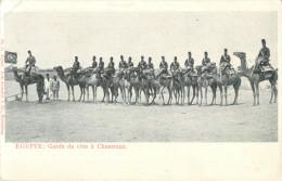EGYPTE - GARDE DE COTE A CHAMEAUX