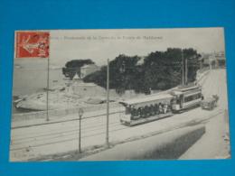 """13) Marseille - Promenade De La Corniche Et Pointe De Maldormé  """" Tram - Attelage """"   - Année   - EDIT - - Endoume, Roucas, Corniche, Plages"""