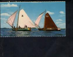 F2668 Friesland Skutsjesilen Zeilboot - Sailing Boat, Bateau à Voile, Barche A Vela - Barche