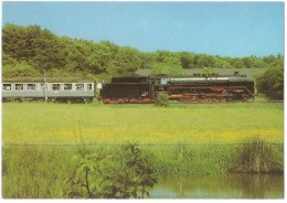 TRAIN Allemagne - EISENBAHN Deutschland - SCHNEITHAIN (SCHNEIDHAIN ?) - Schnelzug-Lokomotive 01 118 - Trains