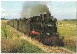 TRAIN Allemagne - EISENBAHN Deutschland - PUTBUS - DR, Schmalspur Dampflokomotive 99 4632-8 - Trains