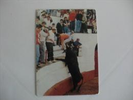 Tauromaquia Victor Manuel da Costa Felizardo Portuguese Pocket Calendar 1992