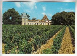 VITICULTURE ( Vin Wine ) VIGNOBLE BORDEAUX - Vieux Chateau CERTAN 33 Pomerol - CPSM CPM GF - Gironde - Altri