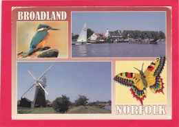 Multi View Of, Norfolk Broadland, England, Posted With Stamp U27. - Angleterre