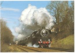 TRAIN Allemagne - EISENBAHN Deutschland - MEININGEN - Dampf Schnellzuglokomotive 03 1010-2 - Trains