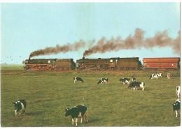 TRAIN Allemagne - EISENBAHN Deutschland - LEER - RHEINE - EMDEM  - Lokomotive 043 + 042 - Trains