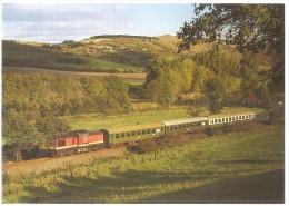 TRAIN Allemagne - EISENBAHN Deutschland - LAUCHA-AN-DER-UNSTRUT - Diesel Streckenlokomotive 202 721-7 - Trains
