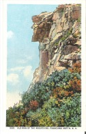The Old Man of the Mountains, Franconia Notch, White Mountains, New Hampshire  5001