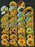30 KRD Schweiz - Sonnenblumen - 1357 B - Riegel
