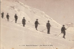 GRAND SAINT BERNARD -MOINES EN SKI - VS Wallis