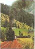 TRAIN Allemagne - EISENBAHN Deutschland - GLASL BREMSE PRÄBICHL - Zahnrad-Tenderlokomotive 197.302 - Trains