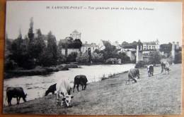 Cpa LA ROCHE POSAY 86 Vue Générale Prise Au Bord De La Creuse - Vaches - - La Roche Posay