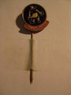 Pin Franco-Suisse (GA01515) - Markennamen