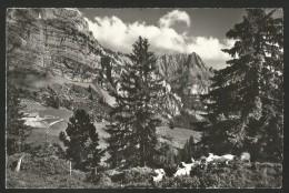 GRIMMIALP Im Diemtigtal Bern Schwenden 1977 - BE Berne