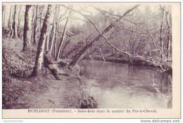 HUELGOAT - 29 - Sous Bois Dans Le Sentier Du Fer à Cheval - Huelgoat
