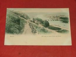 NAMUR  -   Vue Prise Du Chemin Tienne Des Biches   -  1909 - Namur