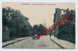 Attelage De Chiens-LUXEMBOURG-Descente De Clausen-Clausenberg-1912- - Unclassified