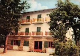 B84402 Monte S Vicino Pian Dell Elmo Albergo S Vicino    Italy - Andere Städte