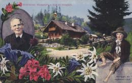 WALDHEIMAT, Colorful Flowers, Waldschuin In Alps Bel Krieglach, Austria, 00-10s - Österreich