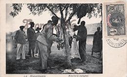 Mauritanie - Boucherie Indigène - Boucher Butcher - Excellent état - 2 SCANS - Mauritanie