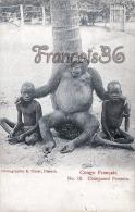 Congo Français - Chimpansé Féminin - Singe Chimpanze Monkie - Photographie R. Visser - Excellent état - 2 SCANS - Congo Français - Autres
