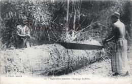 Congo Français - Brazzaville - Exploitation Forestière - Recépage Des Billes - Excellent état - 2 SCANS - Brazzaville