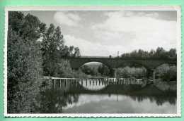 43 Viaduc Et Barrage De La Bageasse - Francia