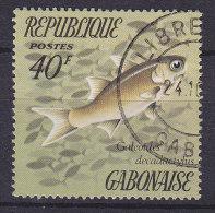 Gabon 1975 Mi. 566     40 Fr Fishe Fish - Gabun (1960-...)