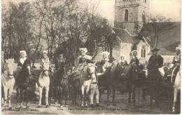 CHEVAL ... HORSE ... NOCE BRETONNE - Chevaux