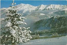 K1665 Abetone (Pistoia) - Monte Cimone - Visto Dal Monte Gomito / Viaggiata 1985 - Altre Città