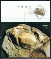 NORTH KOREA 2013 FOSSILS POSTCARD CANCELED - Fossils