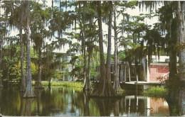 CYPRESS LAKE - University Of Southwestern Louisiana - Campus - Lafayette - Etats-Unis