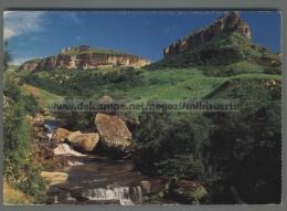 T7934 SOUTH AFRICA MOUNTAIN STREAM DRAKENSBERG BERGSTROOM VG (m) - Afrique Du Sud