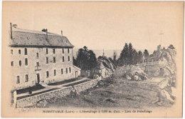 42. NOIRETABLE. L'Hermitage. Lieu De Pélerinage - Noiretable