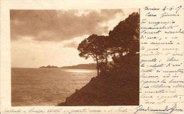 [DC5945] CARTOLINA - MARE O LAGO? ALBERI - Viaggiata - Old Postcard - Non Classificati