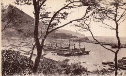 cpa ORAN, vue sur santa-Cruz et le port, vue prise de la promenade de L�tang   (44.77)