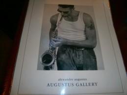 POSTER PLASTIFIE   ALEXANDRE AUGUSTUS  DIM 50 X 40 CM - Manifesti & Poster