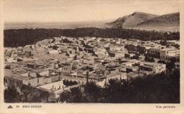 cpa BOU SAADA, vue g�n�rale d'un belle petite ville,  jardins aux murs hauts   (44.83)