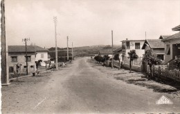 cpsm COURBET MARINE, l'avenue de la plage et les villas    (44.84)