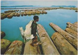 AFRIQUE,AFRIKA ,GABON,prés Congo,guinée,cameroun,anc Ienne Colonie Française,enfant Chasseur,bois Flottant - Gabon