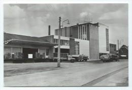 Carte Postale - ZONHOVEN - S.V.Lilac - CPA  // - Zonhoven
