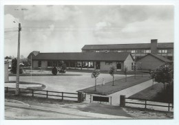 Carte Postale - ZONHOVEN - Rijkslagere En Middelbare Scholen - CPA  // - Zonhoven